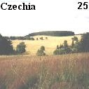 Lonely meadows of Cesky les